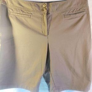 Ann Taylor Curvy Shorts Size 16